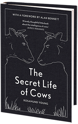 secret-life-of-cows-book-cover-400
